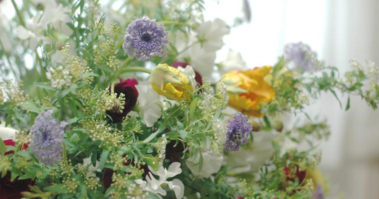 3月の草花のワークショップのご案内