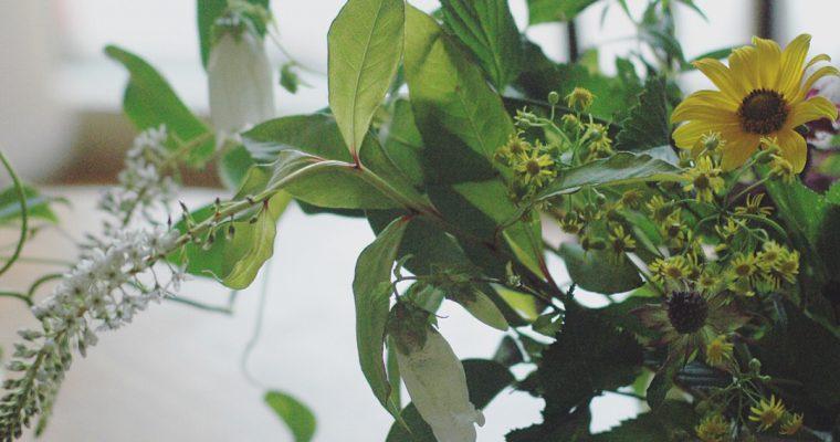 6月*草花のワークショップ