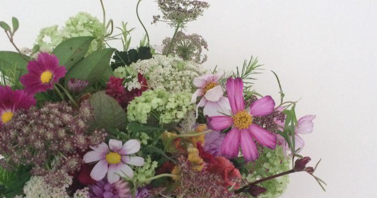 10月の草花のワークショップのご案内